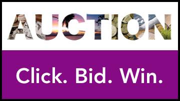 CPT12 Auction