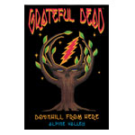 Grateful Dead: Downhill from Here - DVD