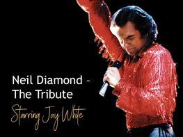 Neil Diamond – The Tribute