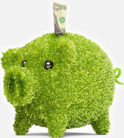 green-piggy-bank-430
