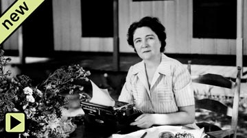 Here Is Home: Marjorie Kinnan Rawlings and Cross Creek